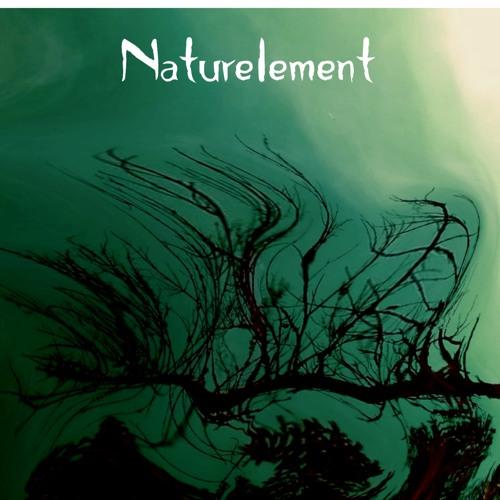 Naturelement's avatar