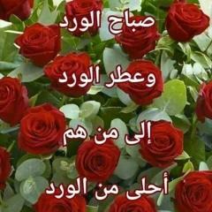 احمد الحفته ابو شادي