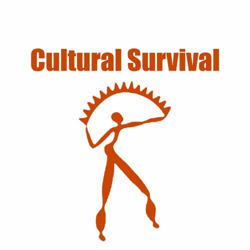 Cultural Survival's avatar