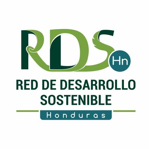 RDS-HN's avatar