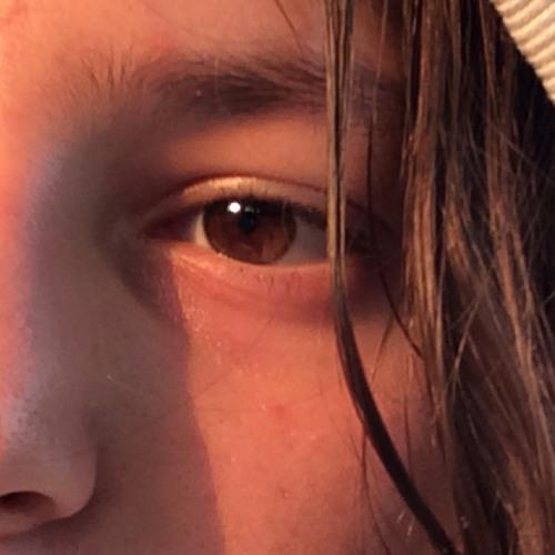 Sarčes Oficial Sarčes's avatar