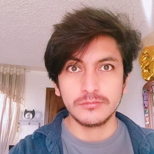 Raul Pîke Potter's avatar