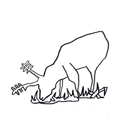 Kalou's avatar
