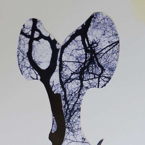 SonofKirk's avatar