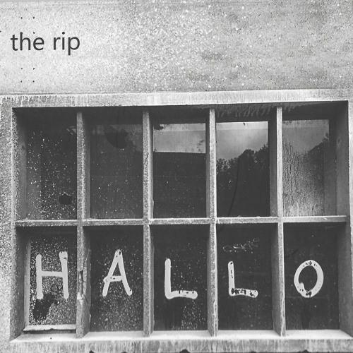 the rip's avatar