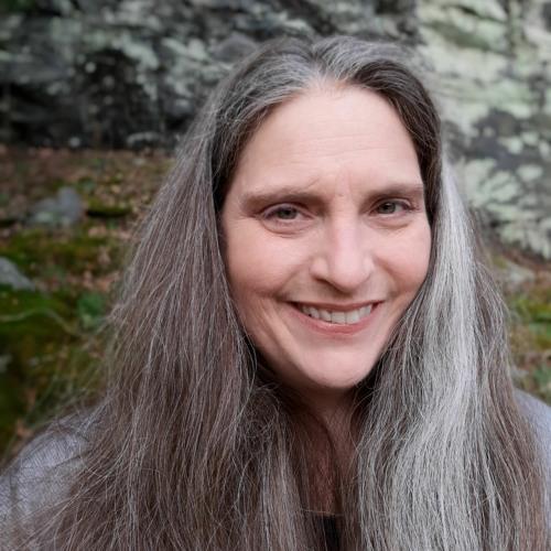 Lisa S. Ware (@lisaSwareVO)'s avatar