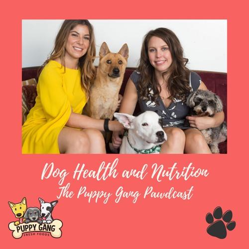 Puppy Gang Fresh Foods's avatar