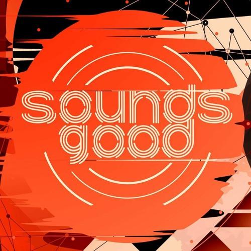 SOUNDS GOOD  | Techno & House | Dresden's avatar