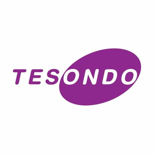 Tesondo's avatar