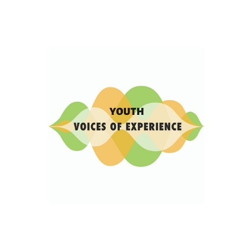 Youth Voices of Experience's avatar