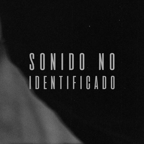 Sonido No Identificado's avatar