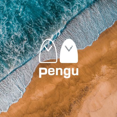 Pengu Musica's avatar