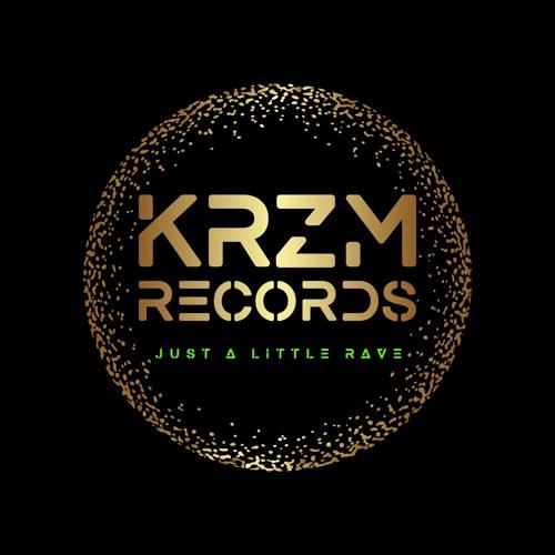 KRZM Records's avatar