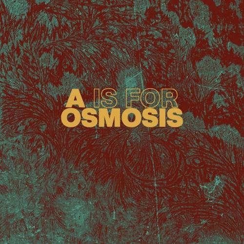 AOsmosis Records's avatar