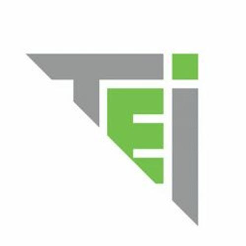 The Ethics Institute's avatar
