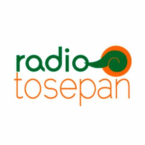 Tosepan Limakxtum's avatar