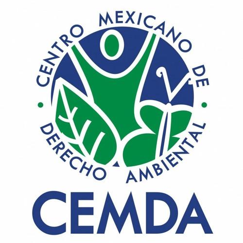 CEMDA's avatar