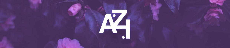 A.Z.I (aye-zee-eye)