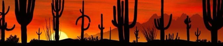LOWIK - Kaktus Sound System