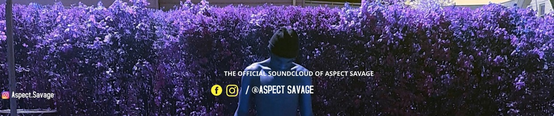Aspect Savage