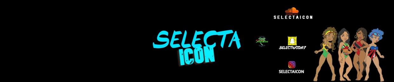 Selectaicon