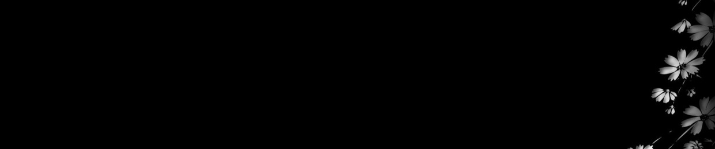 luvaiden