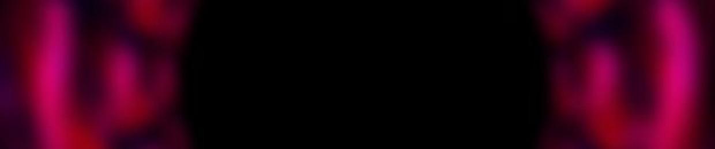 lundylizard