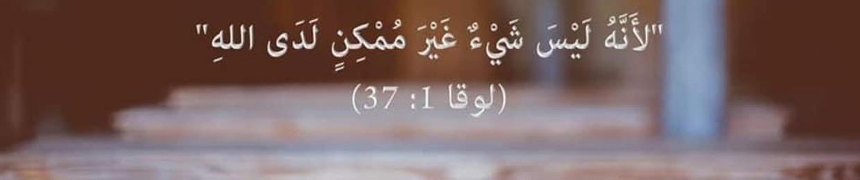 Bassim mamdouh amin